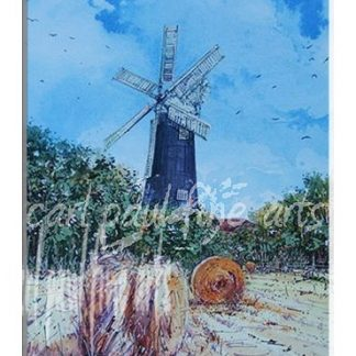 Wheat field, Waltham windmill