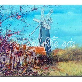 Autumn leaves, Waltham windmill